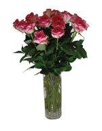 Rosesvase