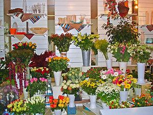 Interflora_fleursetnature_00