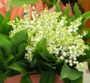 Bouquet_muguets_2
