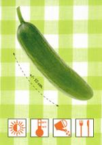 Concombrefruit