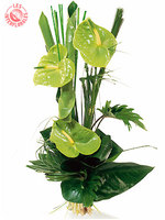 Bouquet_interflora_2