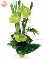 Bouquet_interflora_2