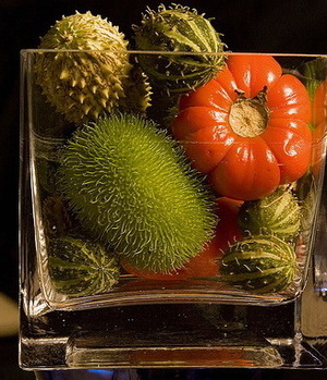 Fruits14_2
