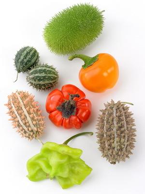 Fruits_12