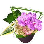 Interflora_masson_02