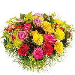 Roses_comore