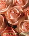 Roseemotion