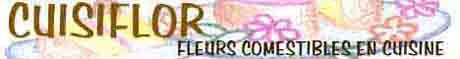 Logocuisiflor